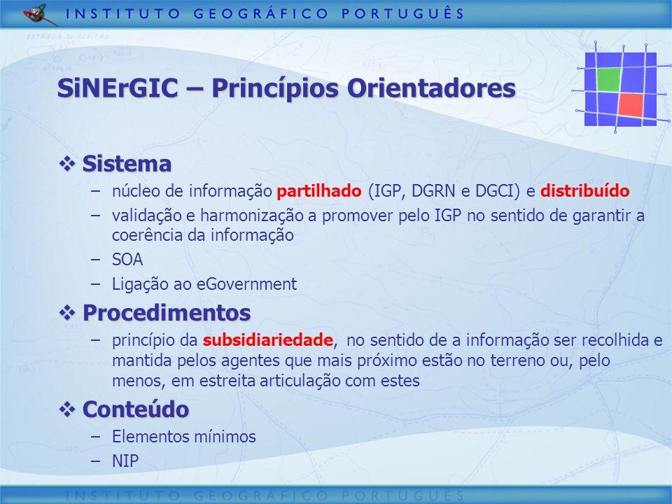 SiNErGIC – Princípios Orientadores