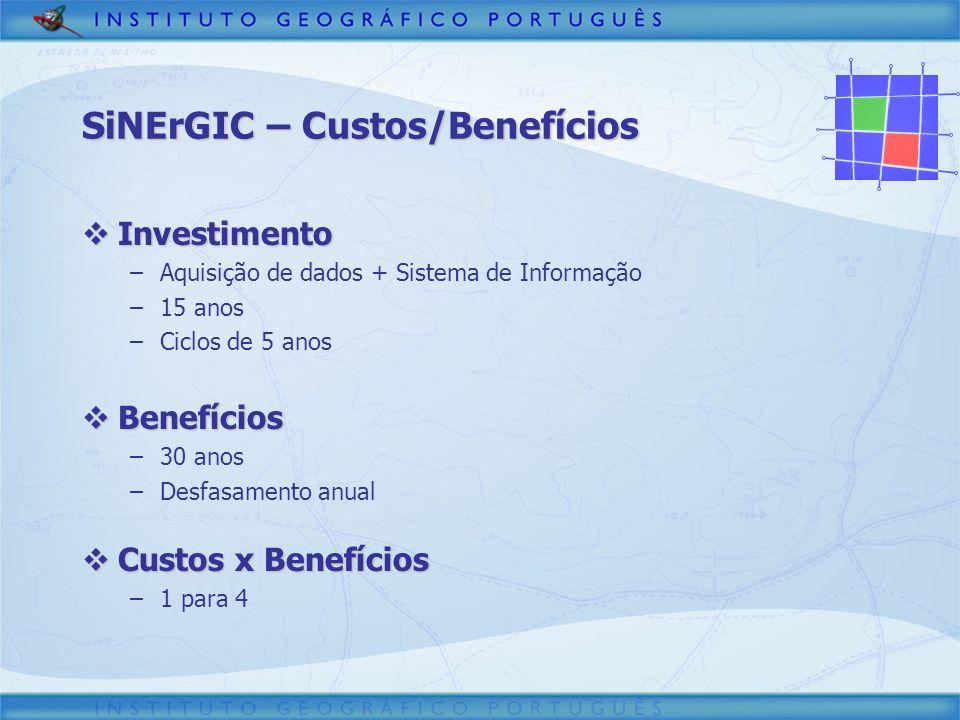 SiNErGIC – Custos/Benefícios