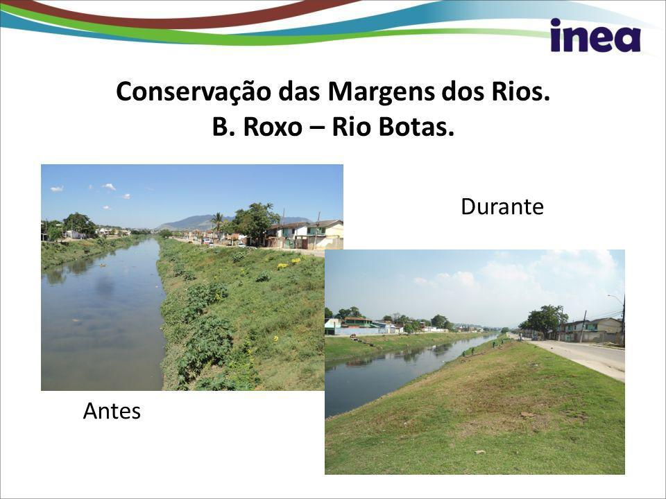 Conservação das Margens dos Rios. B. Roxo – Rio Botas.