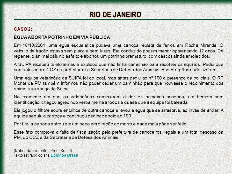 RIO DE JANEIRO CASO 2: ÉGUA ABORTA POTRINHO EM VIA PÚBLICA: