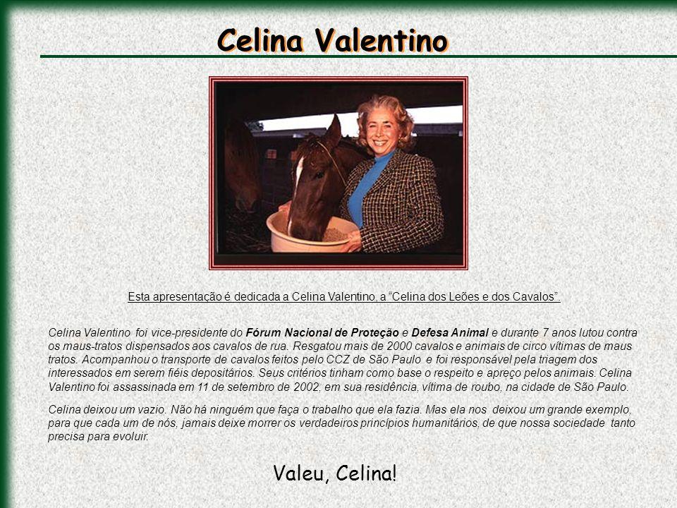 Celina Valentino Valeu, Celina!