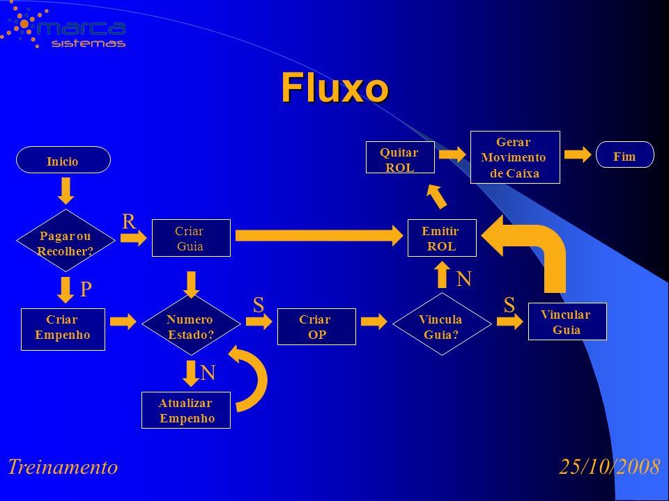 Fluxo R N P S S N Treinamento 25/10/2008 Gerar Movimento de Caixa