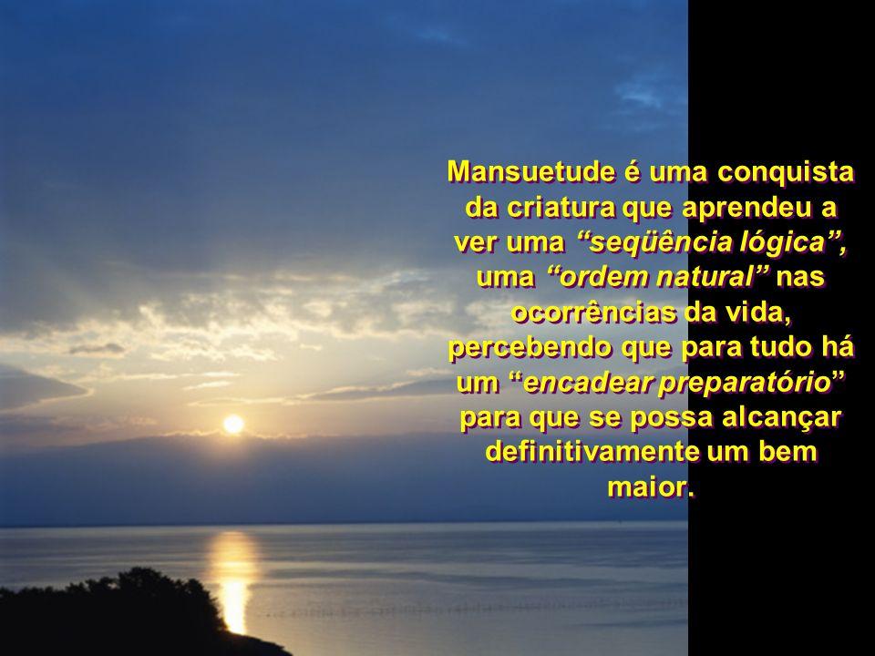 Mansuetude é uma conquista da criatura que aprendeu a ver uma seqüência lógica , uma ordem natural nas ocorrências da vida, percebendo que para tudo há um encadear preparatório para que se possa alcançar definitivamente um bem maior.