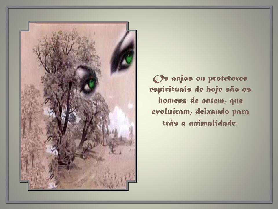 Os anjos ou protetores espirituais de hoje são os homens de ontem, que evoluíram, deixando para trás a animalidade.