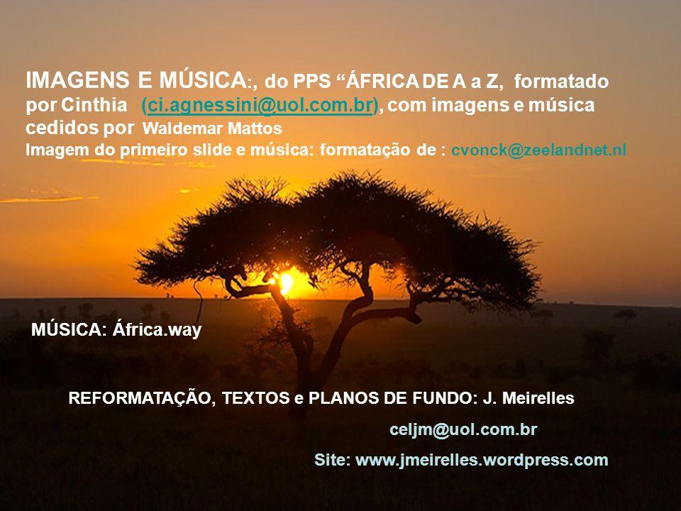 IMAGENS E MÚSICA:, do PPS ÁFRICA DE A a Z, formatado por Cinthia (ci
