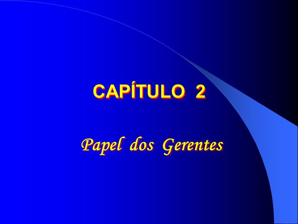 CAPÍTULO 2 Papel dos Gerentes