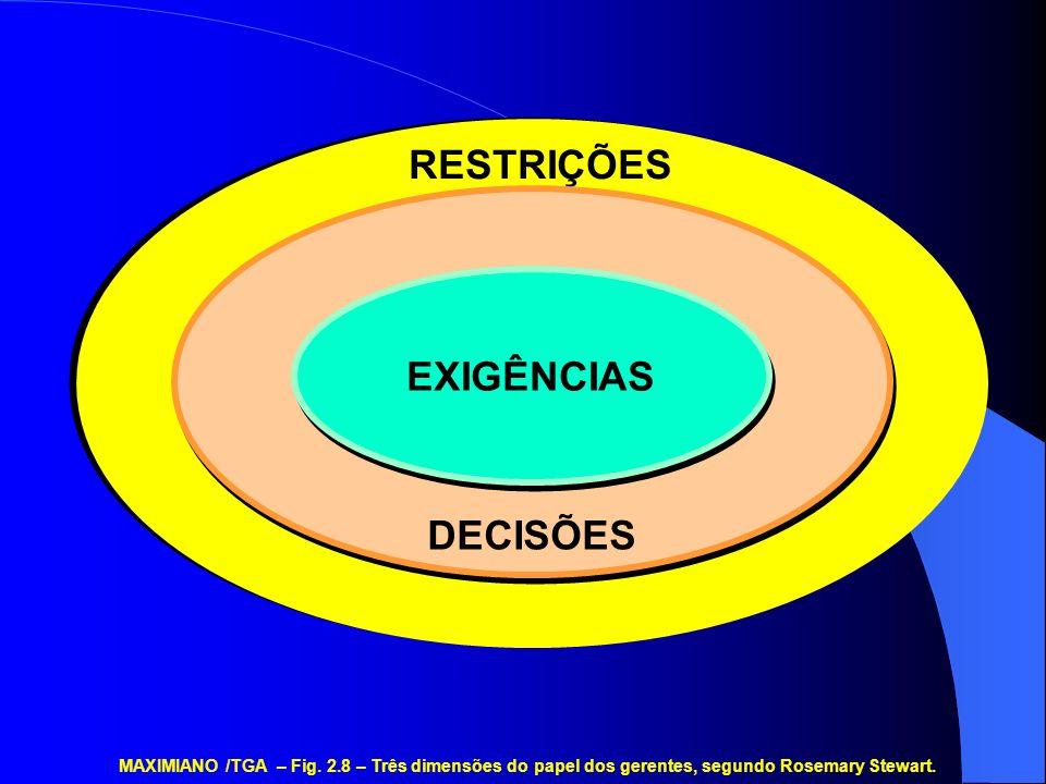 RESTRIÇÕES DECISÕES EXIGÊNCIAS