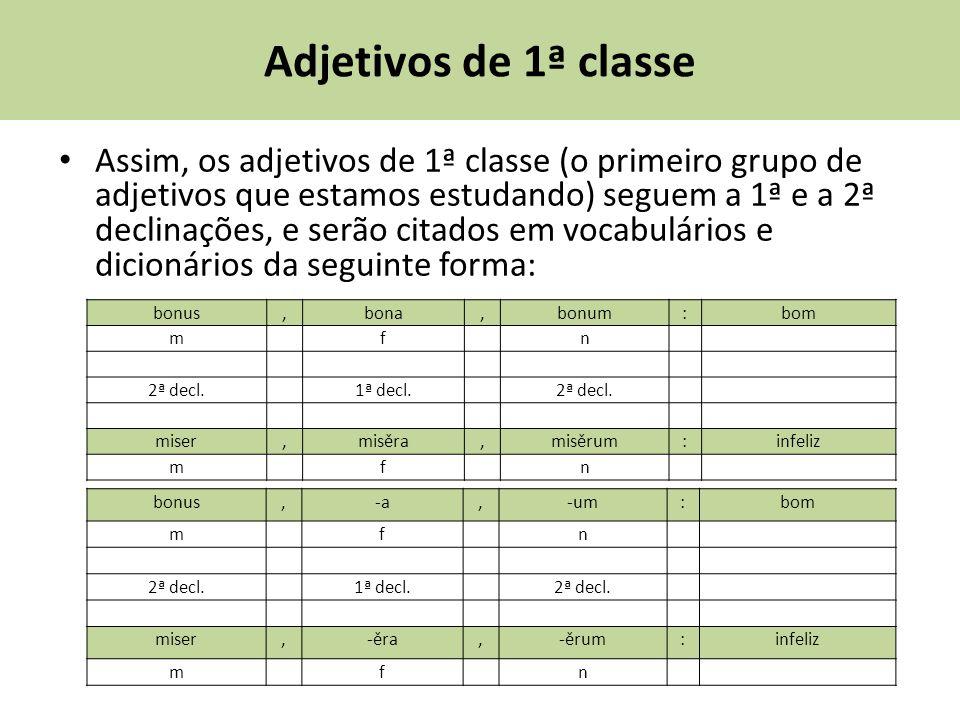 Adjetivos de 1ª classe