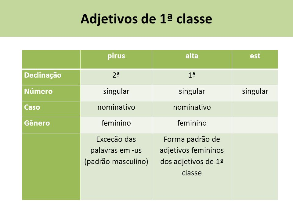 Adjetivos de 1ª classe pirus alta est Declinação 2ª 1ª Número singular