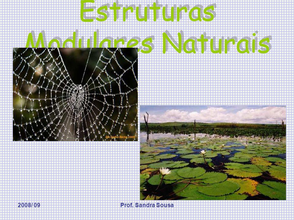 Estruturas Modulares Naturais