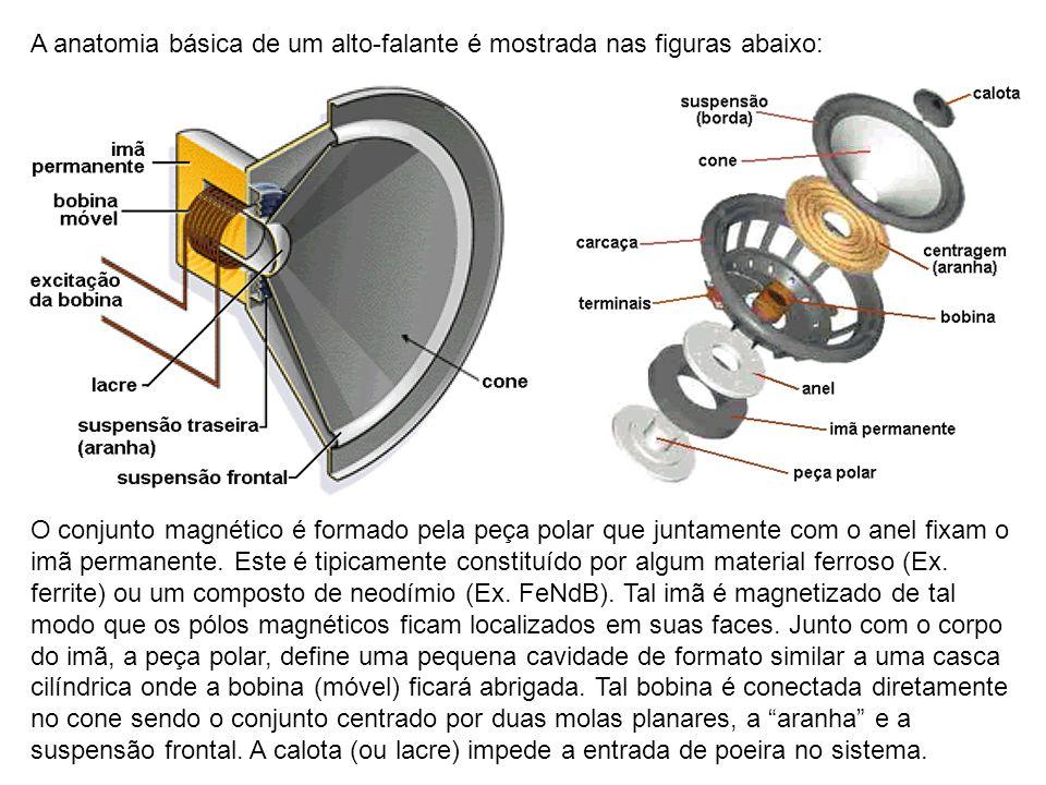A anatomia básica de um alto-falante é mostrada nas figuras abaixo: