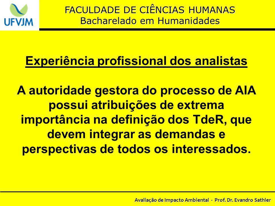 Experiência profissional dos analistas