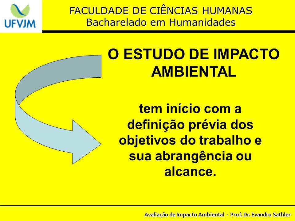 O ESTUDO DE IMPACTO AMBIENTAL