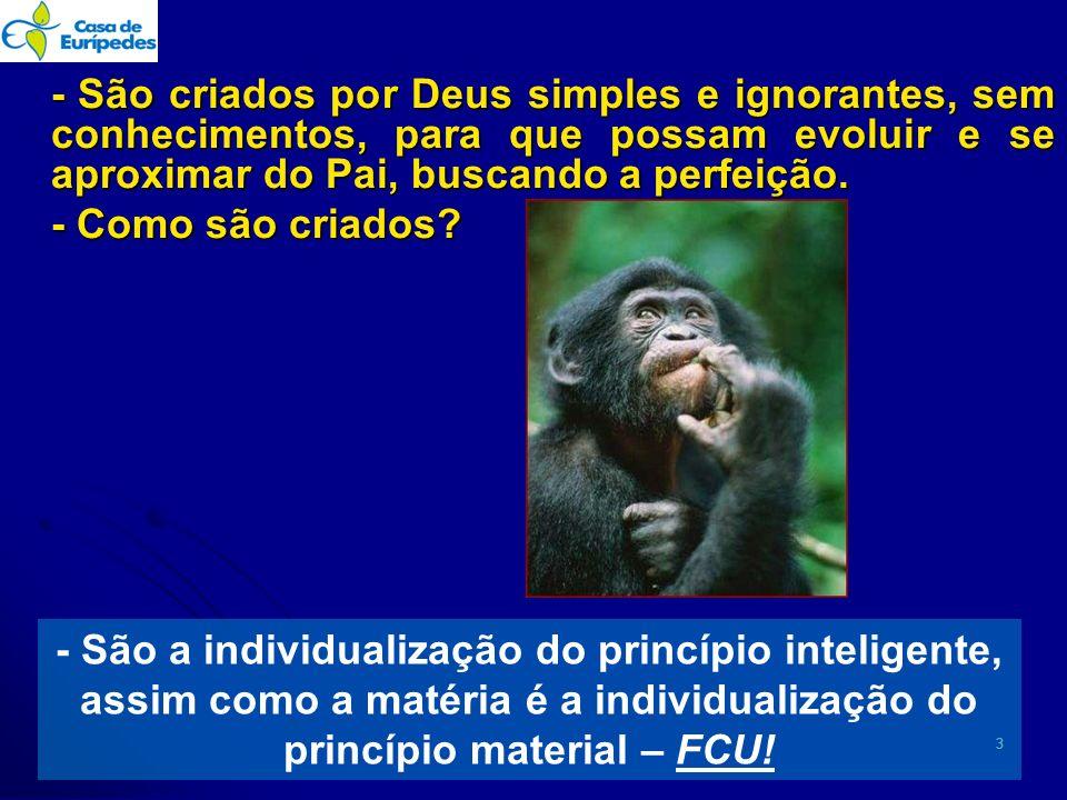 - São criados por Deus simples e ignorantes, sem conhecimentos, para que possam evoluir e se aproximar do Pai, buscando a perfeição. - Como são criados