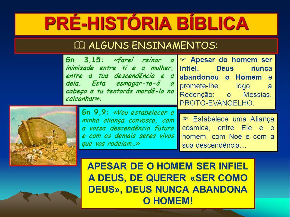  ALGUNS ENSINAMENTOS: