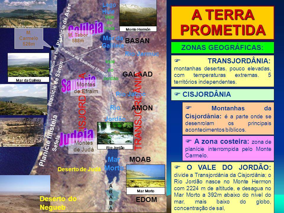 A TERRA PROMETIDA Galileia Samaria Judeia CISJORDÂNIA TRANSJORDÂNIA