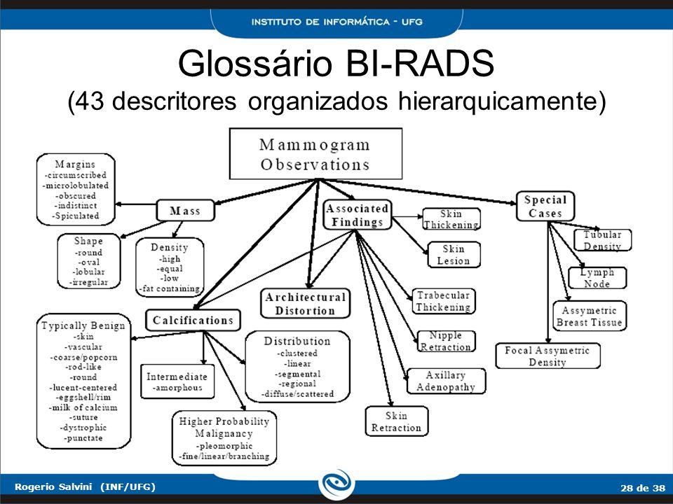 Glossário BI-RADS (43 descritores organizados hierarquicamente)