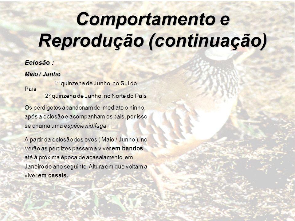 Comportamento e Reprodução (continuação)
