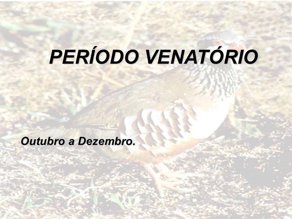 PERÍODO VENATÓRIO Outubro a Dezembro.