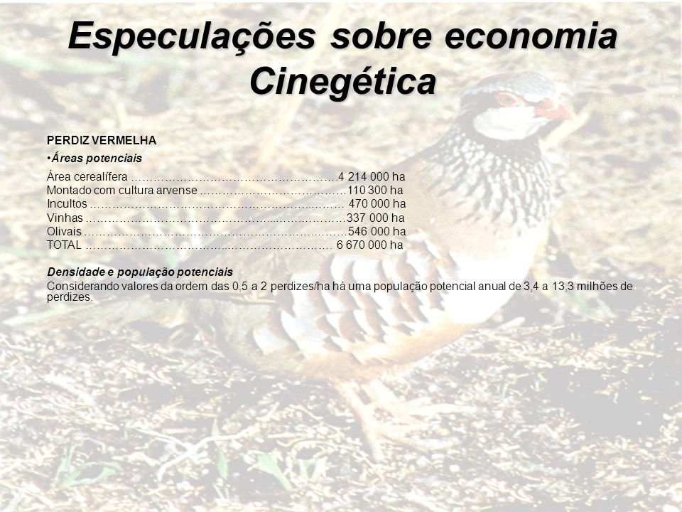 Especulações sobre economia Cinegética
