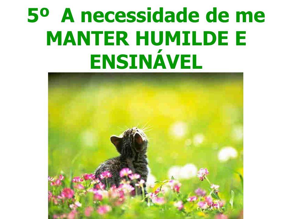 5º A necessidade de me MANTER HUMILDE E ENSINÁVEL