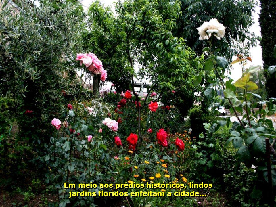 IMG_0979 - ESPANHA - TOLEDO - JARDINS-700