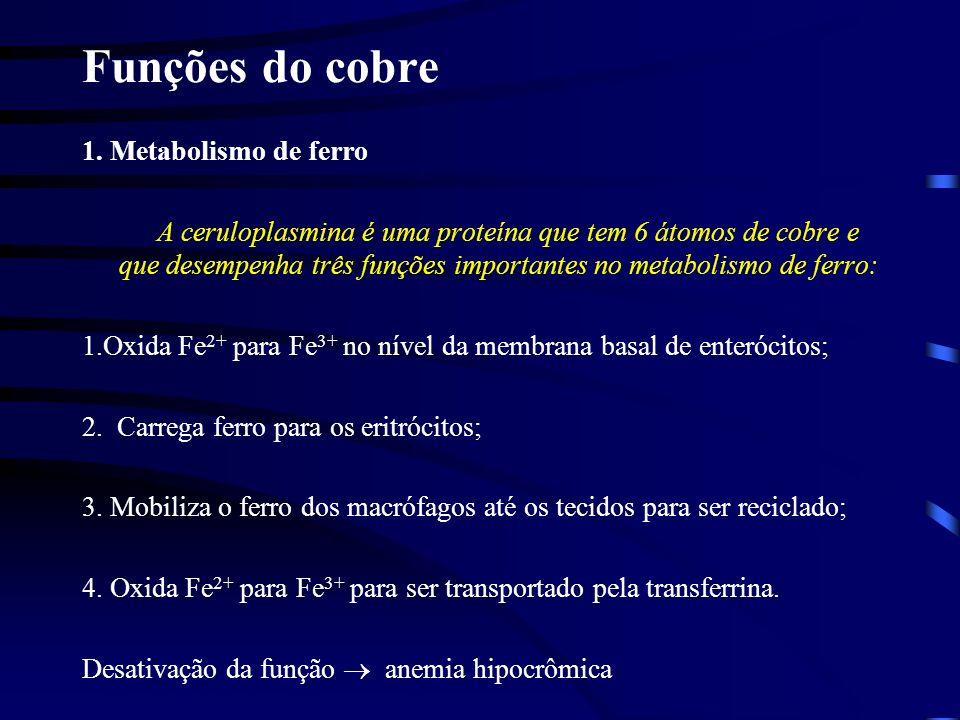 Funções do cobre 1. Metabolismo de ferro