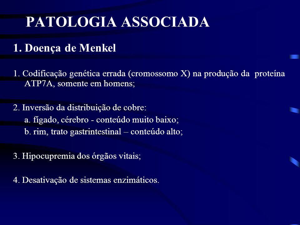 PATOLOGIA ASSOCIADA 1. Doença de Menkel