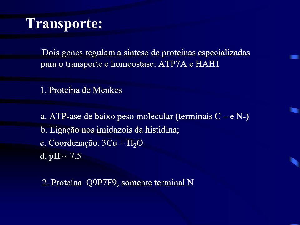 Transporte: Dois genes regulam a síntese de proteínas especializadas para o transporte e homeostase: ATP7A e HAH1.