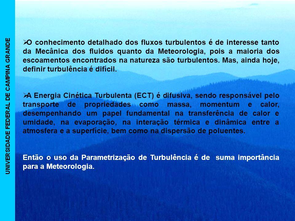 O conhecimento detalhado dos fluxos turbulentos é de interesse tanto da Mecânica dos fluidos quanto da Meteorologia, pois a maioria dos escoamentos encontrados na natureza são turbulentos. Mas, ainda hoje, definir turbulência é difícil.