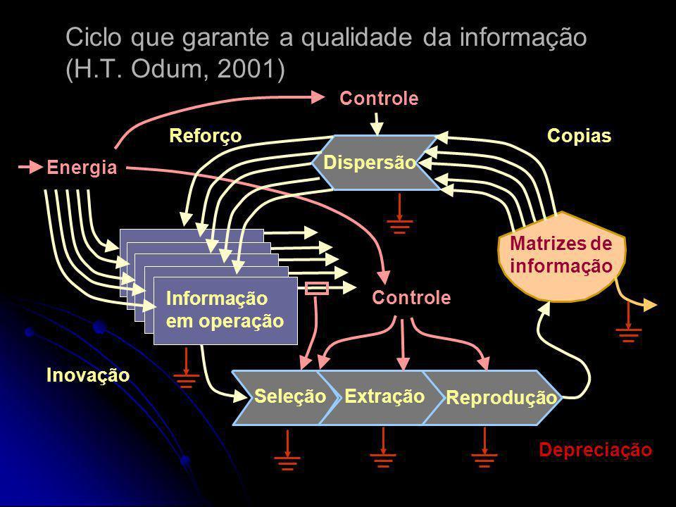 Ciclo que garante a qualidade da informação (H.T. Odum, 2001)