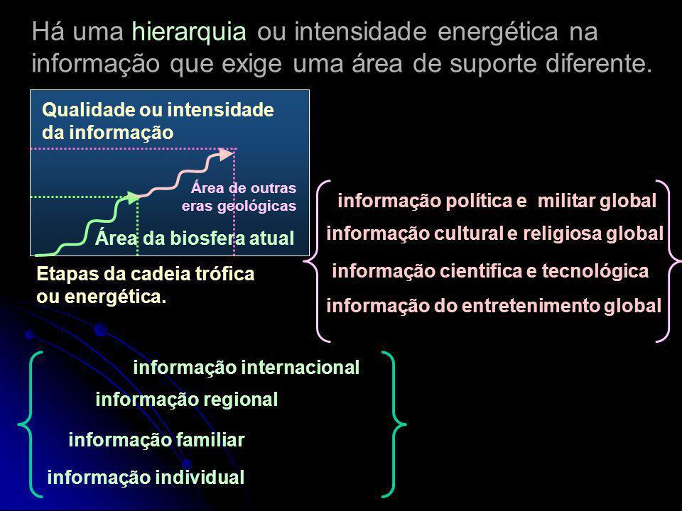 Há uma hierarquia ou intensidade energética na informação que exige uma área de suporte diferente.