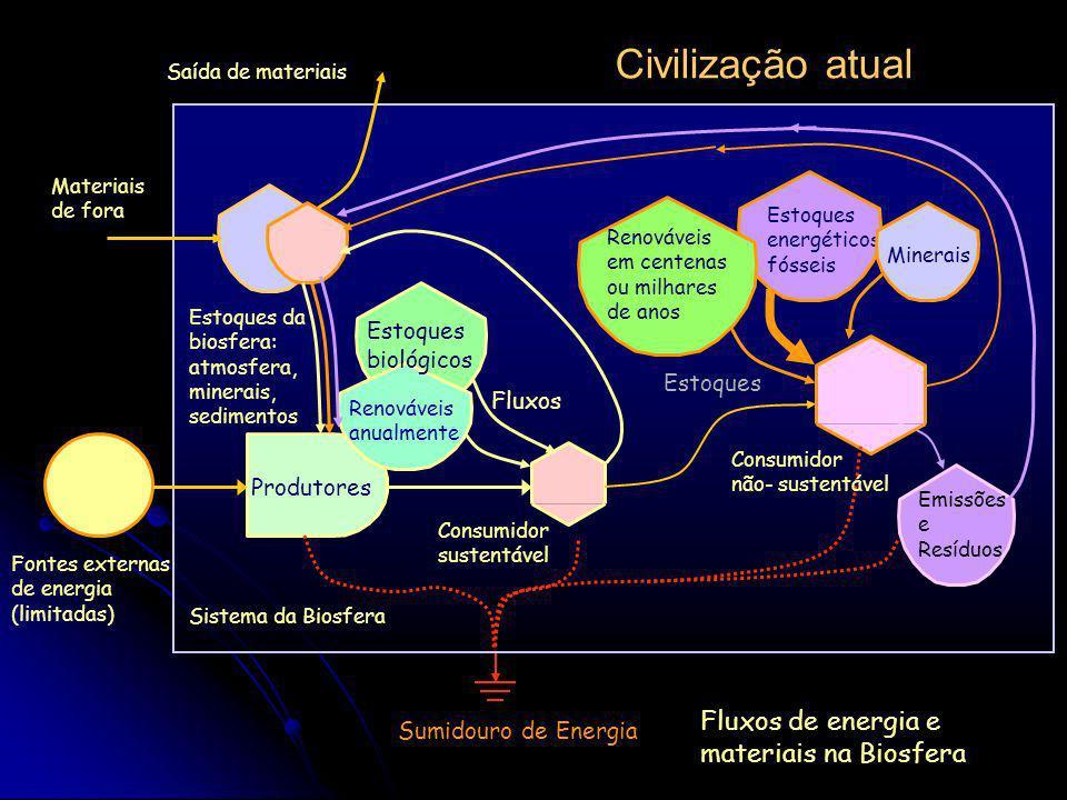 Civilização atual Fluxos de energia e materiais na Biosfera