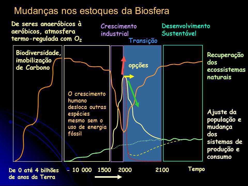 Mudanças nos estoques da Biosfera