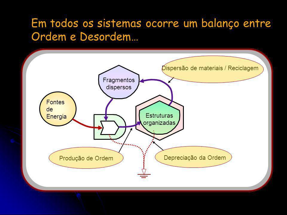 Estruturas organizadas