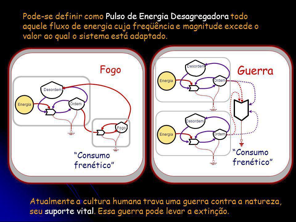 Pode-se definir como Pulso de Energia Desagregadora todo aquele fluxo de energia cuja freqüência e magnitude excede o valor ao qual o sistema está adaptado.