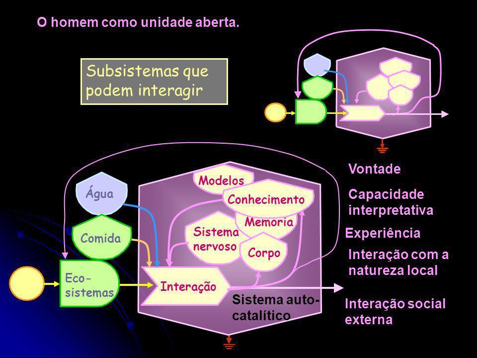 Subsistemas que podem interagir