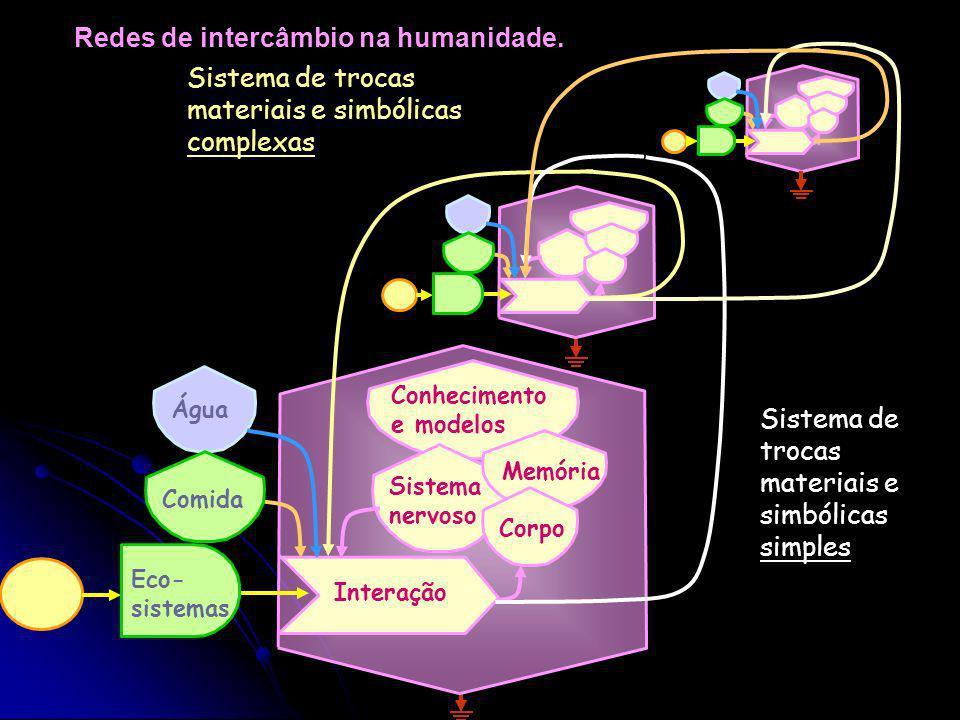 Redes de intercâmbio na humanidade.