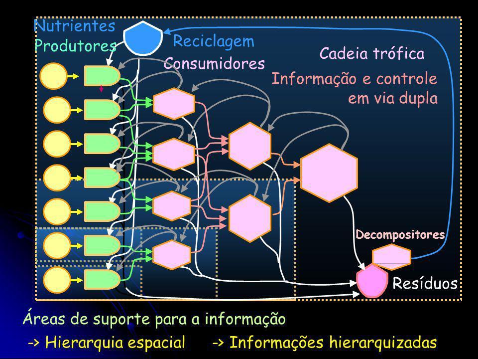Informação e controle em via dupla
