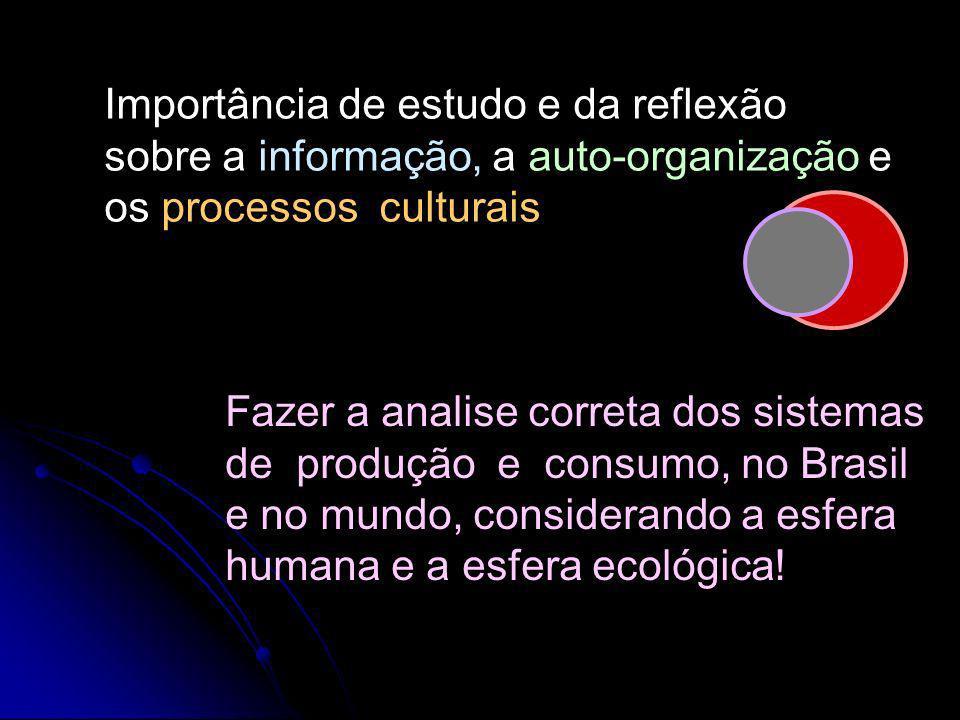 Importância de estudo e da reflexão sobre a informação, a auto-organização e os processos culturais