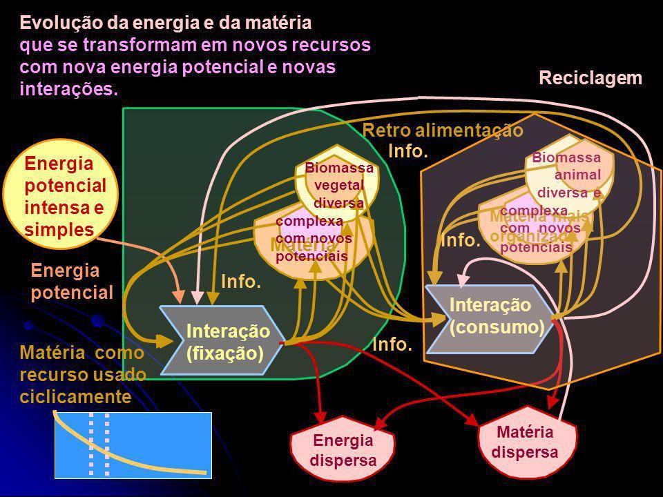 Energia potencial intensa e simples