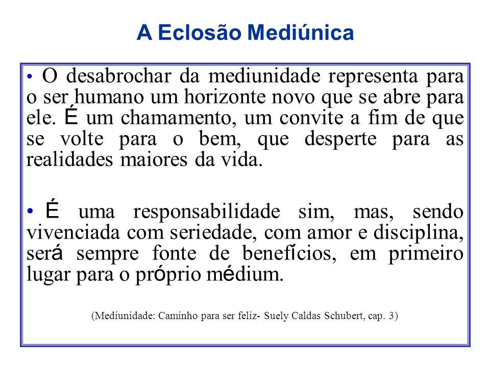 (Mediunidade: Caminho para ser feliz- Suely Caldas Schubert, cap. 3)