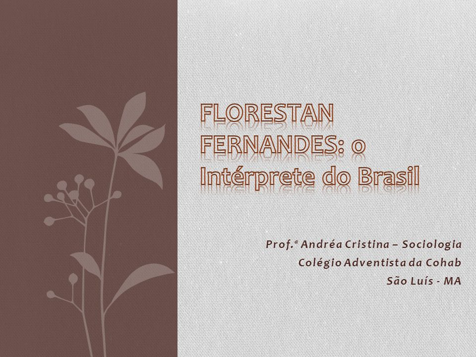 FLORESTAN FERNANDES: o Intérprete do Brasil