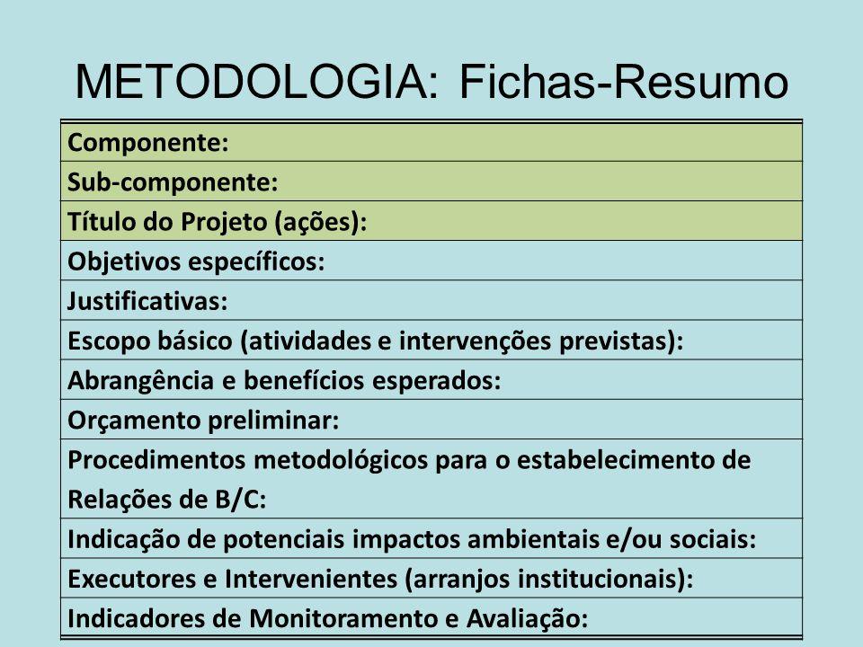METODOLOGIA: Fichas-Resumo