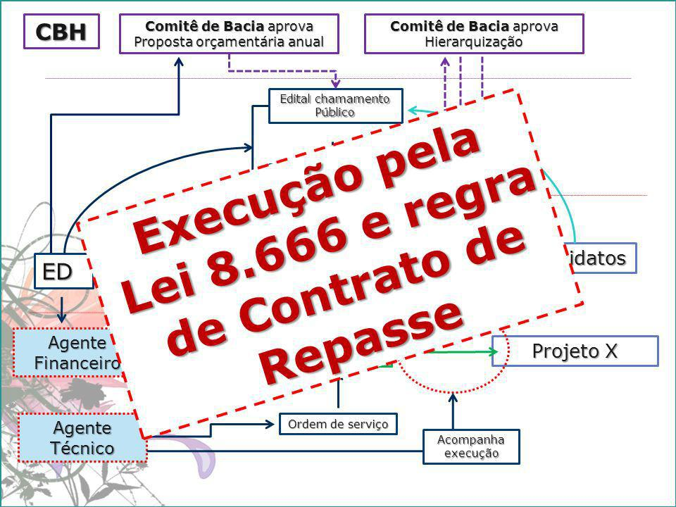 Execução pela Lei 8.666 e regra de Contrato de Repasse