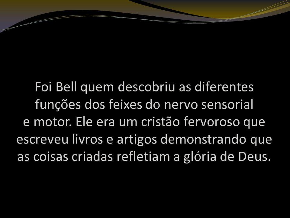 Foi Bell quem descobriu as diferentes funções dos feixes do nervo sensorial e motor.