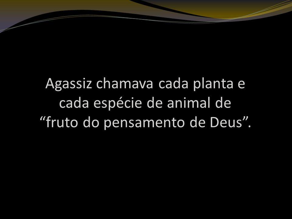 Agassiz chamava cada planta e cada espécie de animal de fruto do pensamento de Deus .