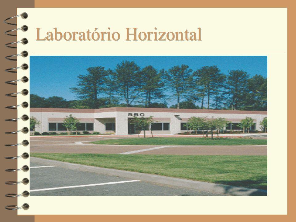 Laboratório Horizontal