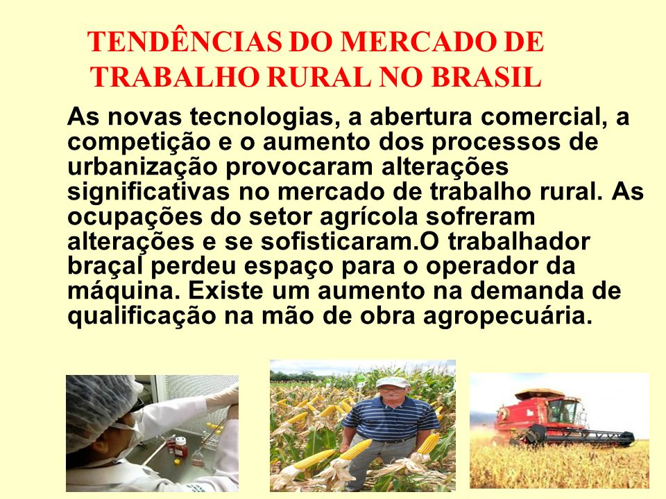 TENDÊNCIAS DO MERCADO DE TRABALHO RURAL NO BRASIL