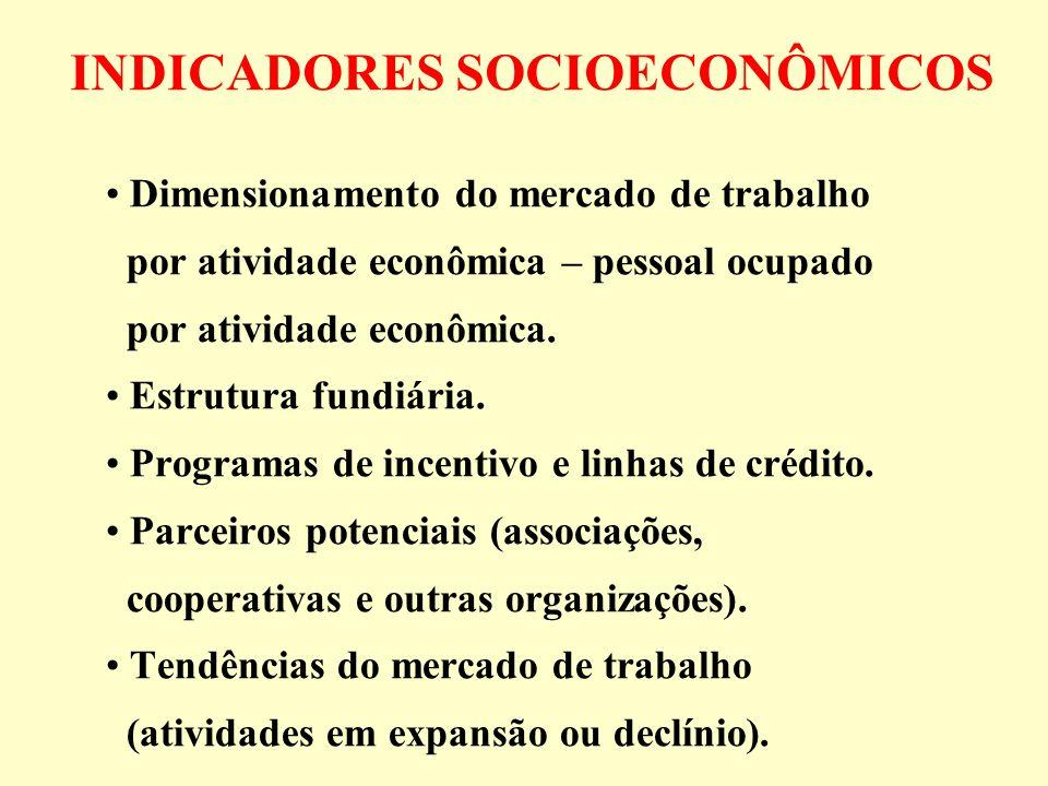 INDICADORES SOCIOECONÔMICOS